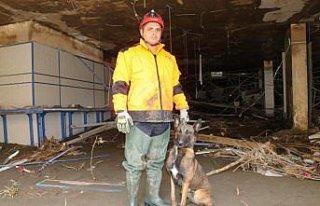 Bozkurt'taki çalışmalara arama kurtarma köpekleri...