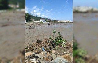 Kastamonu'da sel sularında mahsur kalan inek vinç...