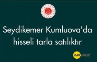 Seydikemer Kumluova'da hisseli tarla satılıktır