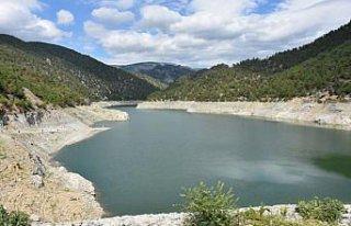 Sinop'ta baraj ve göletlere 100 bin sazan yavrusu...