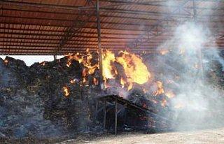 Amasya'da besi çiftliğinde çıkan yangına müdahale...
