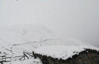 Karadeniz'de 4 ilin yüksek kesimlerinde kar...