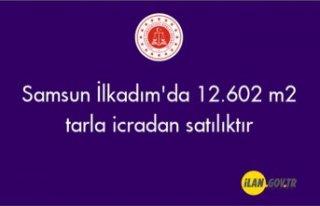 Samsun İlkadım'da 12.602 m2 tarla icradan satılıktır