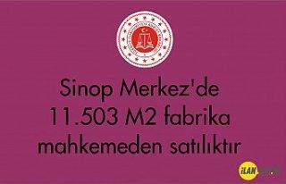 Sinop Merkez'de 11.503 m² fabrika mahkemeden...