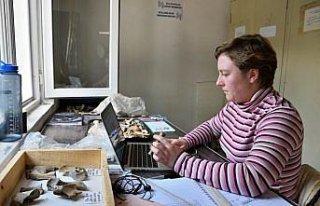 ABD'li zooarkeolog, Hattuşa'da Hititlerin hayvanlarla...