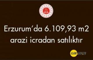 Erzurum İspir'de 6.109,93 m² arazi icradan...