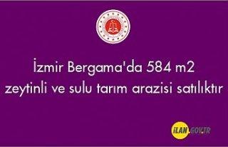 İzmir Bergama'da 584 m² zeytinli ve sulu tarım...