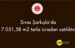 Sivas Şarkışla'da 7.051,58 m² tarla icradan...