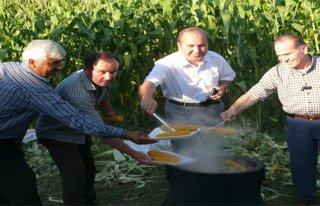 ÇETİNKAYA BELDESİNDE MISIR FESTİVALİ