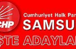 CHP SAMSUN MİLLETVEKİLİ ADAYLARI