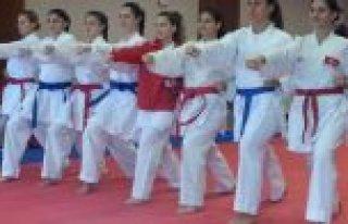 Karatede Balkan Şampiyonası'nda 8 Madalya