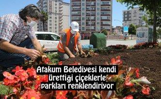Atakum Belediyesi kendi ürettiği çiçeklerle parkları renklendiriyor