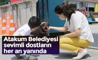 Atakum Belediyesi sevimli dostların her an yanında