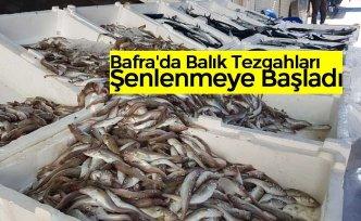 Bafra'da Balık Tezgahları Şenlenmeye Başladı