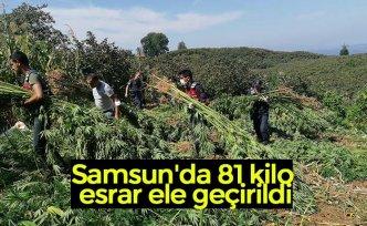 Samsun'da 81 kilo esrar ele geçirildi
