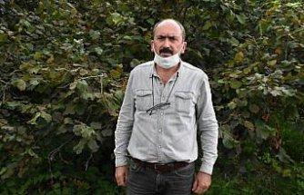 Fındık üreticileri, TMO'nun ardından serbest piyasada artan fiyatlardan memnun