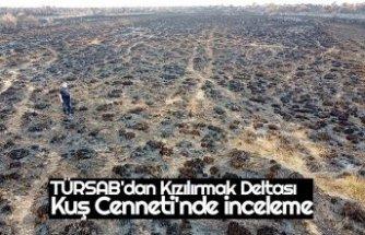 TÜRSAB'dan Kızılırmak Deltası Kuş Cenneti'nde inceleme