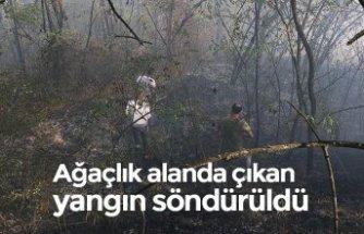 Ağaçlık alanda çıkan yangın söndürüldü