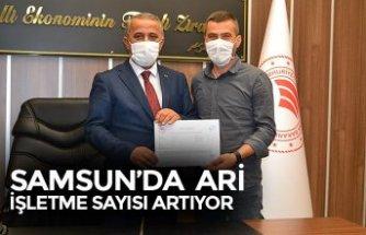 SAMSUN'DA ARİ İŞLETME SAYISI ARTIYOR