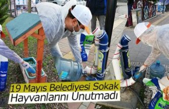 19 Mayıs Belediyesi Sokak Hayvanlarını Unutmadı