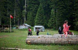 Batı Karadeniz yaylaları kademeli normalleşme süreciyle şenlendi