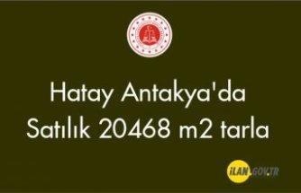 Hatay Antakya'da 20468 m2 tarla Satılık