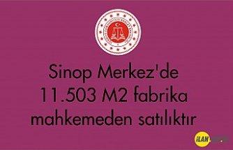 Sinop Merkez'de 11.503 m² fabrika mahkemeden satılıktır