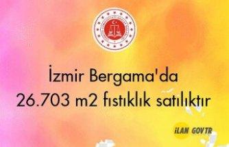 İzmir Bergama'da 26.703 m² fıstıklık icradan satılıktır