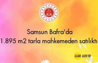 Samsun Bafra'da 1.895 m² tarla mahkemeden satılıktır