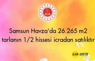 Samsun Havza'da 26.265 m² tarlanın 1/2 hissesi icradan satılıktır
