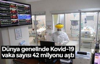 Dünya genelinde Kovid-19 vaka sayısı 42 milyonu aştı