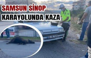 Samsun Sinop Karayolunda Kaza
