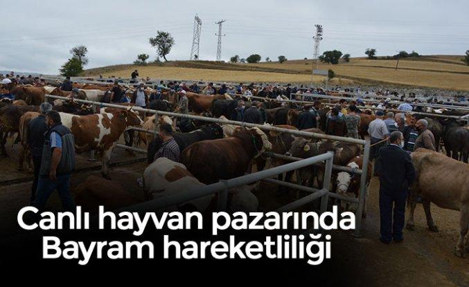 Canlı hayvan pazarındaBayramhareketliliği