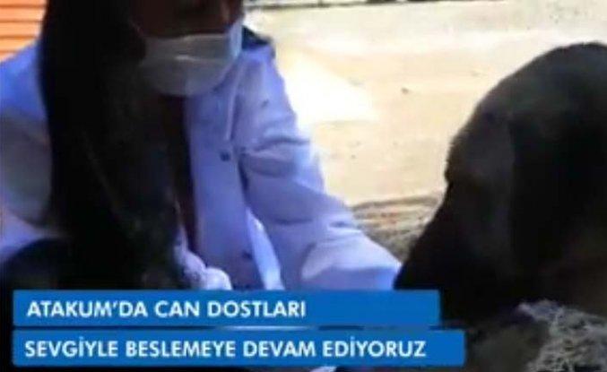 """Atakum Belediyesi """"Can dostları sevgiyle beslemeye devam ediyoruz"""""""