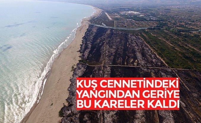 Kızılırmak Deltası Kuş Cenneti'ndeki yangın