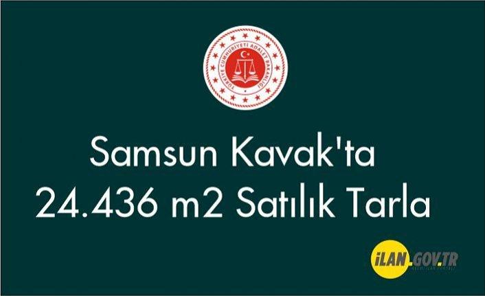 Samsun Kavak'ta 24.436 m2 Satılık Tarla