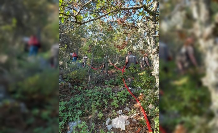 Sinop'ta çıkan orman yangınında 2 hektar alan zarar gördü