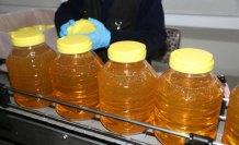 Ordu'dan Tanzanya ve Çin'e fındık yağı ihracatı