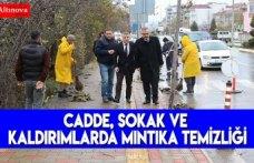 CADDE, SOKAK VE KALDIRIMLARDA MINTIKA TEMİZLİĞİ