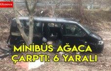 Minibüs ağaca çarptı: 6 yaralı