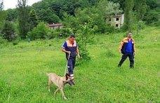 Zonguldak'ta kayıp kişiyi arama çalışmaları sürüyor