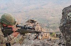 Pençe Harekatı'nda 48 terörist etkisiz hale getirildi