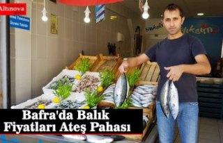 Bafra'da Balık Fiyatları Ateş Pahası