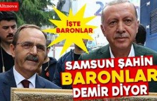 SAMSUN ŞAHİN, BARONLAR DEMİR, DİYOR!