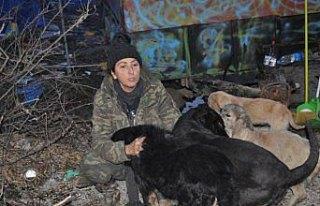 Bartın'da hayvansever kadının açlık grevi