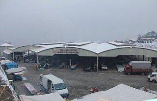 Soğuk hava sebze pazarını etkiledi