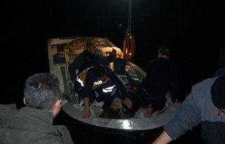 Sinop'ta kamyonet denize devrildi: 2 yaralı