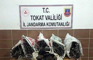 Tokat'ta kablo hırsızlığı iddiası