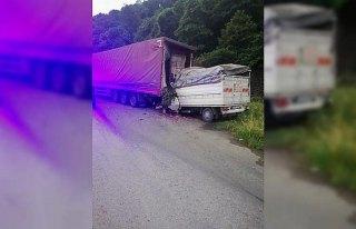 Park halindeki tıra çarpan kamyonetteki 2 kişi...