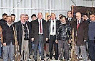 Alaçam da Çiftçilere Ücretsiz 1500 Ceviz Fidanı...